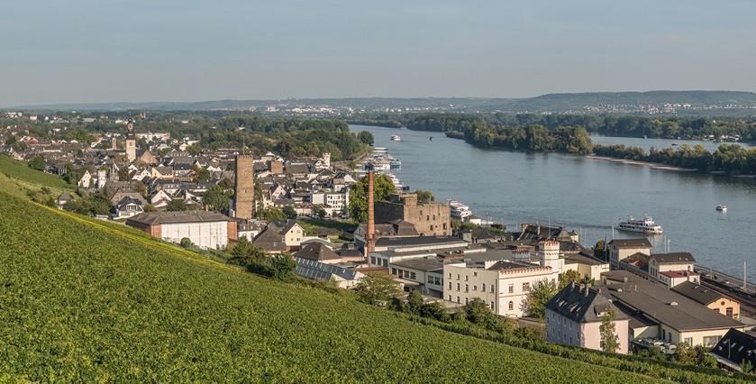 Alle Fakten sprechen gegen eine kostspielige Realisierung der Rheinbrücke